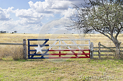 texas-flag-painted-cattle-gate-29251517